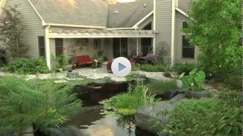 World's Most Beautiful Backyard Ponds