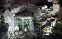 Pond and Landscape Lighting